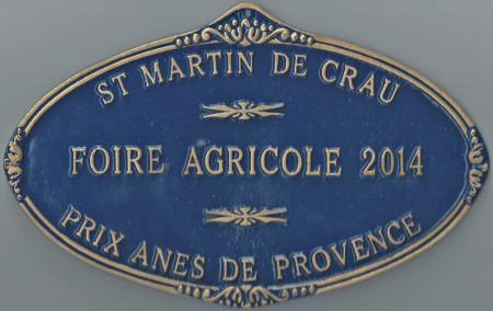 Saint-Martin de Crau